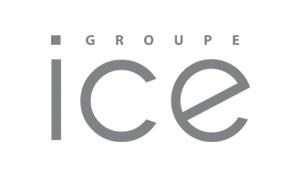 WAT - logo ICEGroupe-gris